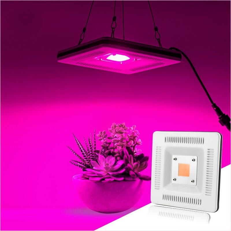 AC 220V Full Spectrum Plant LED Panel Light 50W Grow Lamp IP67 Waterproof 360 Degree Heat Dissipation Hidroponic Seed EU US Plug