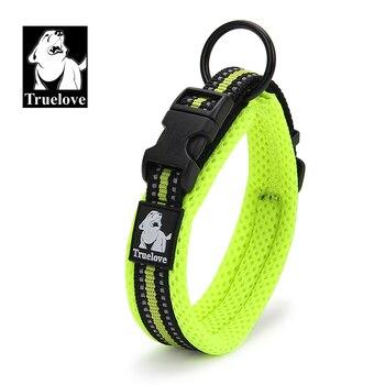 True love Dog collar dog collar dog collar dog collar dog collar TLC5011 фото