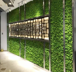 Image 5 - 1000 グラム高品質シミュレーション緑色植物不滅偽花苔草リビングルーム装飾壁 diy の花の装飾