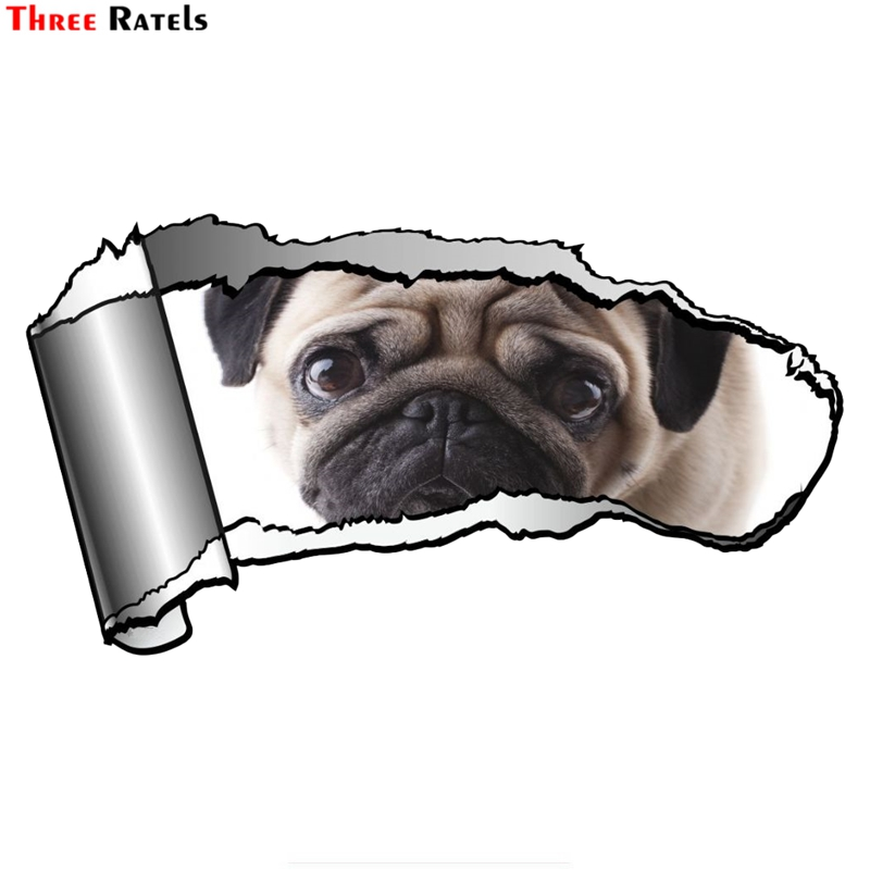 Three Ratels FTC-848#20x10.8cm Ripped Open Gash Torn Metal Design With Cute Pet Pug Dog Motif Vinyl Car Sticker