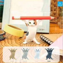 5 Pçs/set Animação Brinquedos Engraçado Gatinho Gato Bonito Suporte da Pena Do PVC Figuras de Ação Colecionáveis Adultos das Crianças do Presente de Aniversário Modelo de Brinquedo
