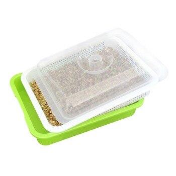 Bandeja de brotes de semillas BPA Libre de PP Cultivo de pasto de trigo saludable de gran capacidad libre de suelo con cubierta bandeja de semillas Placa de brotes hidropónica