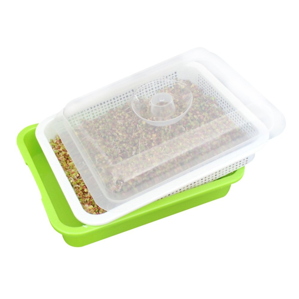 Seed Sprouter Tray BPA Free PP Soil-Free Big Capacity Healthy Wheatgrass Grower With Cover Seedling Tray Sprout Plate Hydroponic