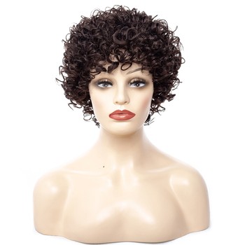 BEIYUFEI Hair Short Black Afro Kinky Curly Wig for Women African American Wigs Synthetic Short Kinky Heat Resistant Fiber Hair europe style heat resistant synthetic fashion black short kinky curly afro wig for women