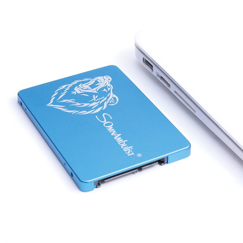SOMNAMBULIST Metal Big Brown Bear SSD 2.5 '' SATA3 Hdd SSD 120gb Ssd 240gb 480gb SSD 960GB Internal Solid State Drive Laptop Des