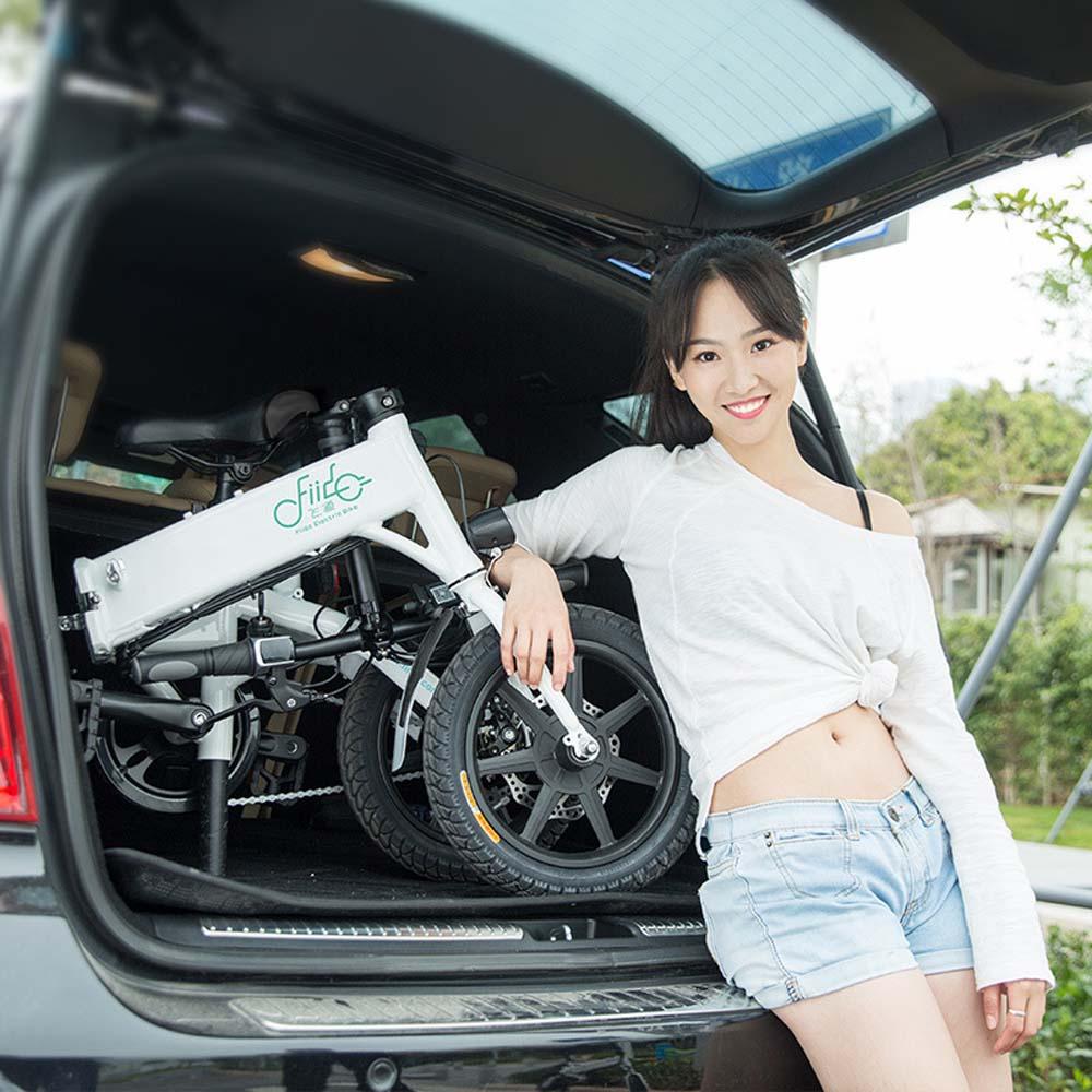 CE Approved Cheap but high quality 36V 250W Foldable Electric Bike New folding e bike /folding D1