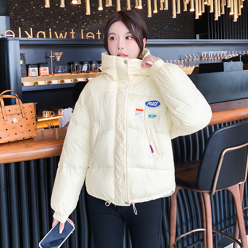 Plus Size Stand Collar Thick Puff Jacket for Women Winter Warm Short Style Female Coat Casual Loose Ladies Cotton Padded Jackets