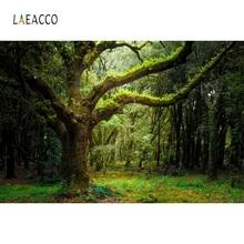 Laeacco Rừng Rừng Cây Cổ Thụ Đồng Cỏ Tự Nhiên Danh Lam Thắng Cảnh Nền Chụp Ảnh Tùy Chỉnh Chụp Ảnh Phông Nền Cho Studio Ảnh