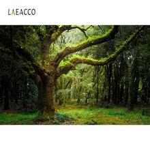Laeacco ג ונגל יער ישן עץ כר דשא הטבע סניק צילום מותאם אישית רקע צילום תפאורות צילום סטודיו