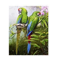 Картина с попугаем по номерам животных diy ремесленные наборы