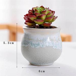 Image 3 - 6pcs Creative Ceramic Succulent Plant Flower Pot Variable Flow Glaze For Home Room Office Seedsplants Plant Pot Without Plant