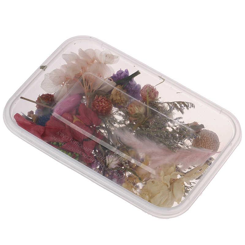 1 Kotak Nyata Kering Bunga Kering Tanaman untuk Lilin Aromaterapi Epoxy Resin Liontin Kalung Perhiasan Membuat Kerajinan DIY Aksesoris