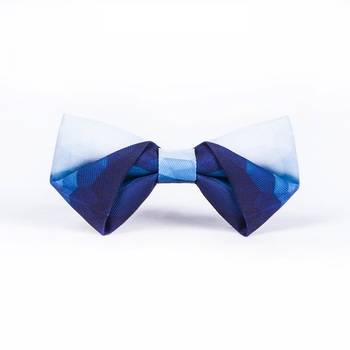 High Quality 2020 New Arrival Men Bow Tie Casual Blue Color Gradient Bowties Butterfly Cartoon Bow Ties for Men Necktie Gift Box