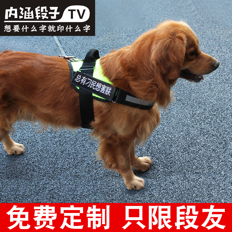 Suspender Strap Dog Dog Chain Golden Retriever Labrador Hand Holding Rope Law Bucket K9 Back Type Chest Large Dog Useful Product