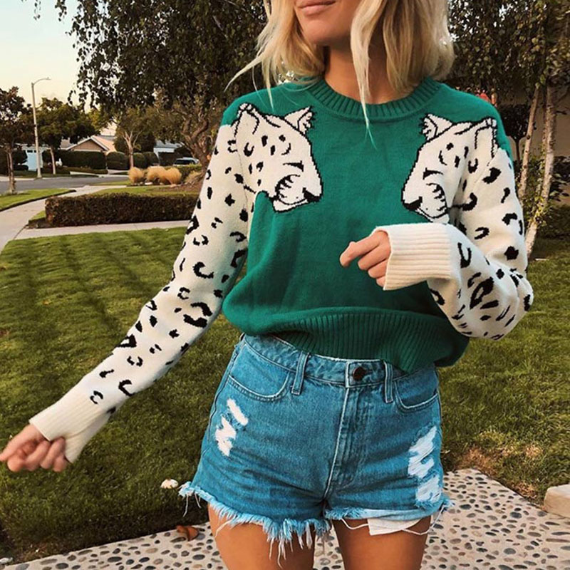 Leopard Pattern Women Sweater O Neck Long Sleeve Female Knitting Pullovers 2020 Spring Autumn Casual Fashion Ladies Sweaters Top