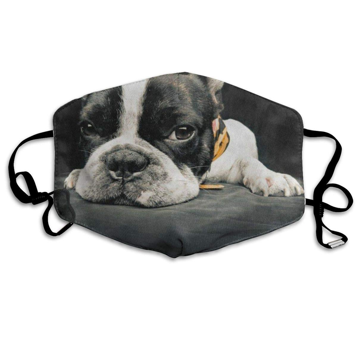 French Puppy Pug Bulldog Marvellous Dust Mouth Mask Reusable Anti-Dust Face Mask Adjustable Earloop Skin Protection