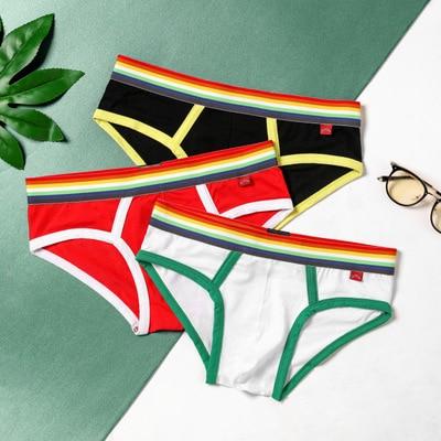 2020 Brand Men's Cotton Underwear Breathable Cuecas Rainbow Belt Briefs Weekend Underpants Male Sexy Solid Underwear