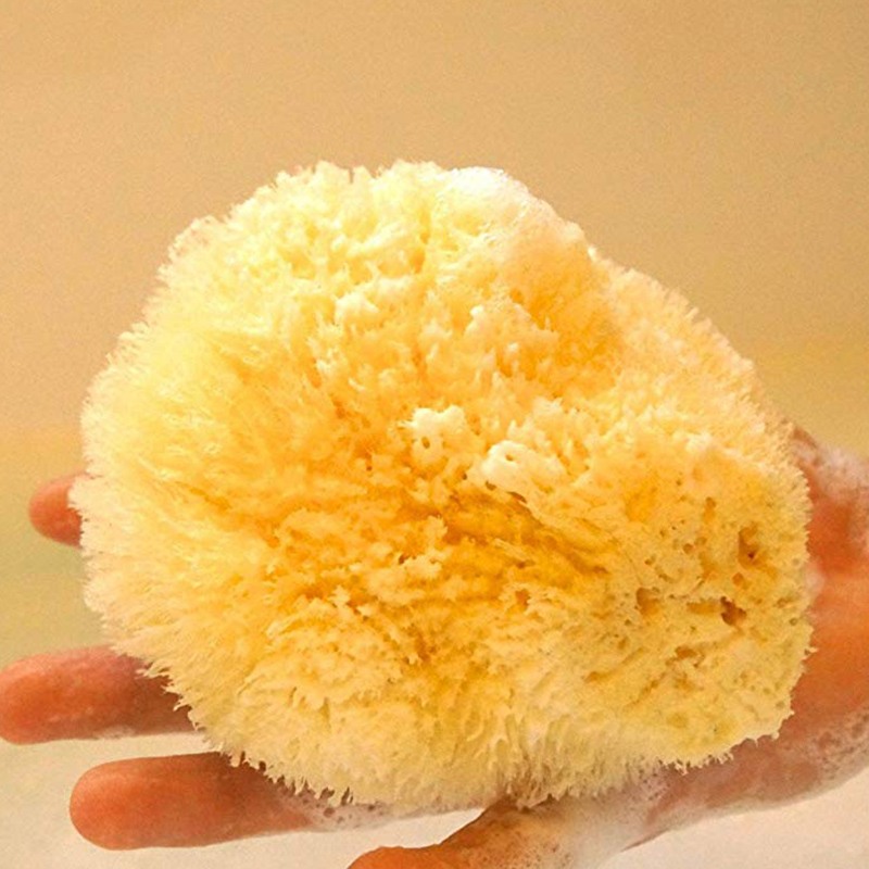 Natural Yellow Sea Grass Sponge. Perfect for Bath, Shower and Body Care. Softly Rough But Not Skin Irritating.