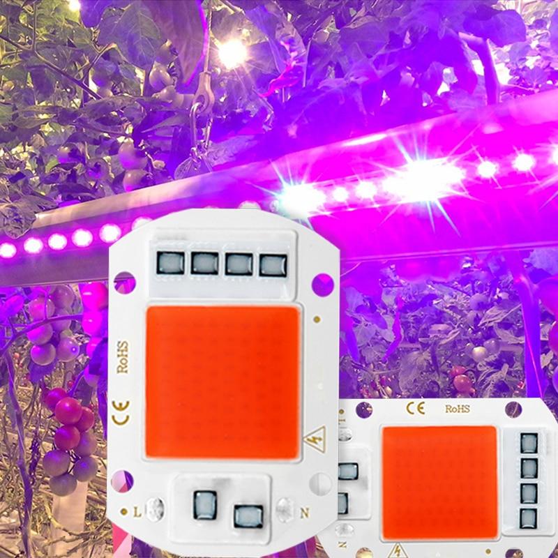 LED Grow Light Full Spectrum COB LED Chip AC 110V 220V No Need Driver Phyto Lamp For Indoor Plant Light Seedling Grow Lamp