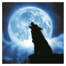 PVC Luminous Wall Sticker DIY Self-Adhesive Moonlight Scenes Sticker Glow in the Dark Room Decal for Home Room Decorative