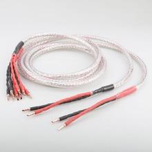Pair 2.5m Pair OFHC Copper speaker cable with banana plug Audio HIFI Speaker wire pair melo david davidlouis audio copper page 2