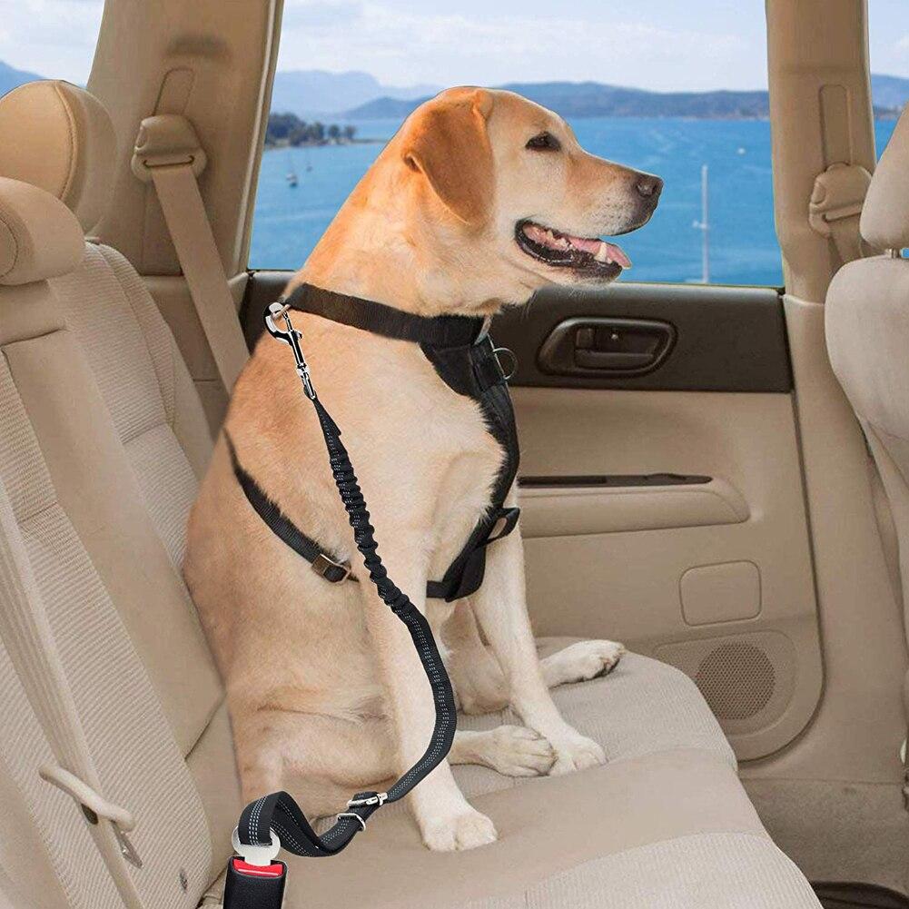 2 pcs Cat Dog Pet Safety Car Strap Seatbelt Seat Belt Adjustable Harness Lead