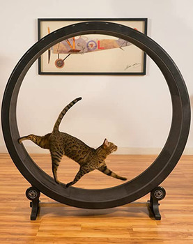 cat Pet cat climbing frame, cat toy, cat sports toy, cat climbing wheel, cat treadmill, cat running wheel