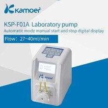 Kamoer KSP-F01A 12V Интеллектуальный шланговый насос с кнопкой для дозирования жидкости