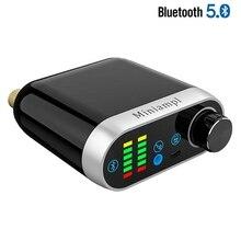 Bluetooth 5.0 HiFi TPA3116 Digitale Amplificatore di Potenza Amp Consiglio 50W * 2 Stereo Con Indicatore Audio Spettro Musicale