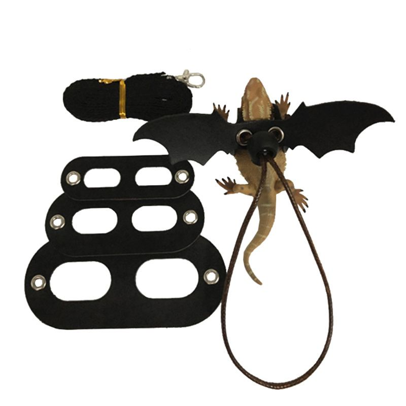 Lizard Traction Rope Reptile Bearded Dragon Harness Leather Leash With Wing  Pet Suppiles