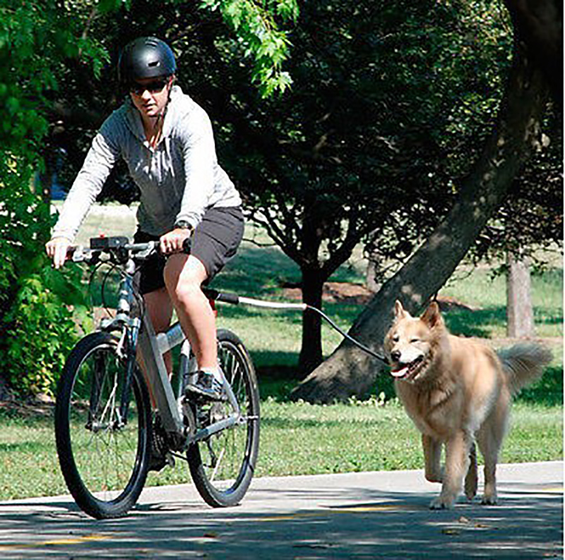 Nylon-elastic-Dog-Bicycle-Traction-Belt-Rope-Dog-Leash-Bike-Attachment-Pet-Walk-Run-Jogging-Distance (1)