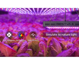 Image 5 - BESTVA 600W/1000W/1200W/1500W/2000W/3000W/4000W led grow light full spectrum for greenhouse indoor plants lamp veg flower seed