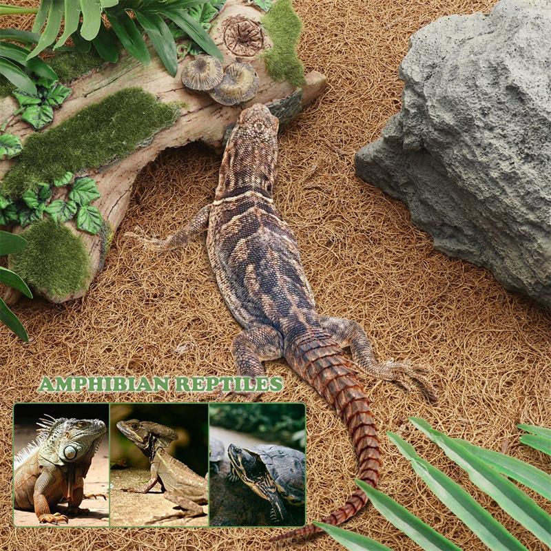 BESTOMZ Reptile Carpet Natural Coconut Fiber Carpet Mat Liner Bedding Reptile Supplies for Lizard Snake Chamelon Turtle 60x40cm