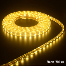 220V SMD 5050 Flexible Led Strip Light 5M 10M 15M  20M+Power Plug,60leds/m IP65 Waterproof led Ribbon