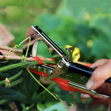 Hand Tools for Tying Plant Branches and Vines Plant Support Care Tapetool Binding Machine Plant Support Garden Agriculture Tools plant support clip vines fastener