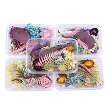 1 Box Real Dried Flowers Dry Plants For Aromatherapy Candle Expoxy Pendant Necklace Jewelry Making Craft DIY Accessories Random