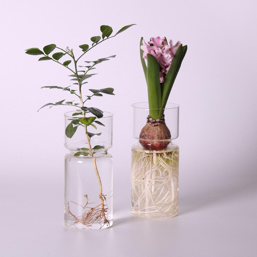 ברור זכוכית יקינתון אגרטל שקוף פרח צמח בקבוק סיר DIY קישוטי בית סלון גן קישוט שולחן Decors 15cm