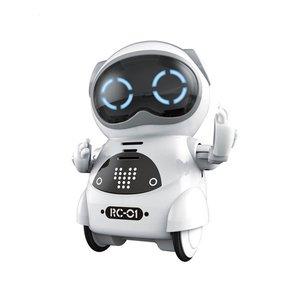 Pocket RC Robot Talking Intera