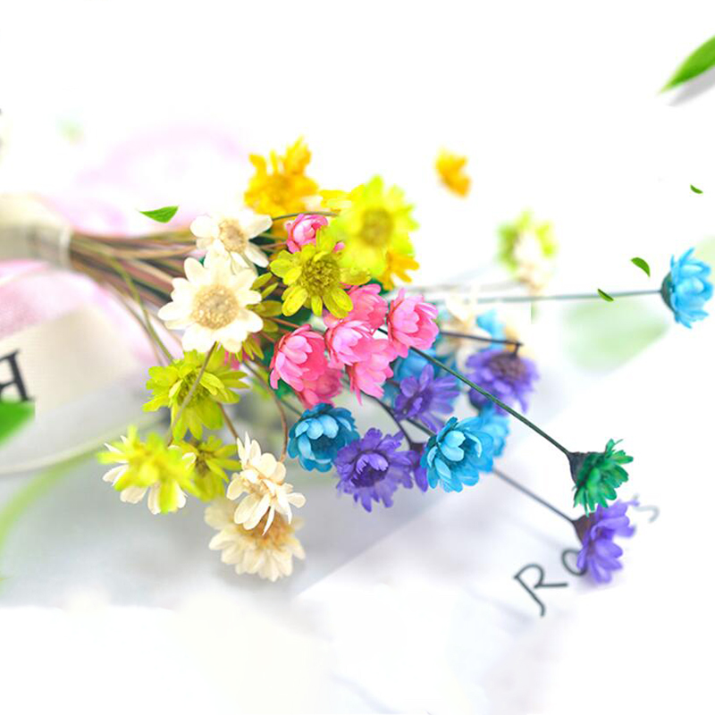 10pcs Home Decor Wedding Party Decorative Photography Props 3d Floral Real Dried Flowers Diy Resin Pendant Jewelry Making Access Artificial Dried Flowers Aliexpress