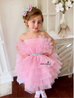 Kid Birthday Party dress Pink Girls Pink Celebration Dresses Big Occassion Dress Custom