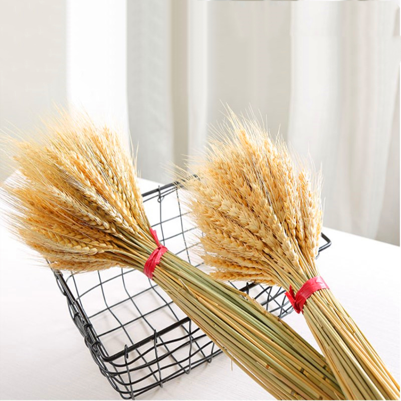 50pcs/lot  Artificial Flowers Wheat Autumn Decoration Pampas Grass Craft Flowers Dried Flowers For Wedding Decoration Wheat