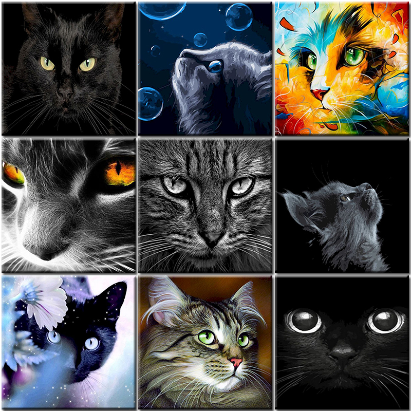 Oil Cat Painting By Number Animal On Canvas With Frame Acrylic For Drawing Adult Kit Picture Paint By Number Coloring Decor Gift