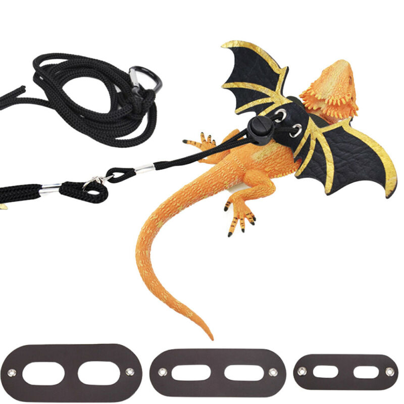 Creative Solid Adjustable Lizard Bearded Dragon Reptile Critter  Leash Harness Wings For S/M/L