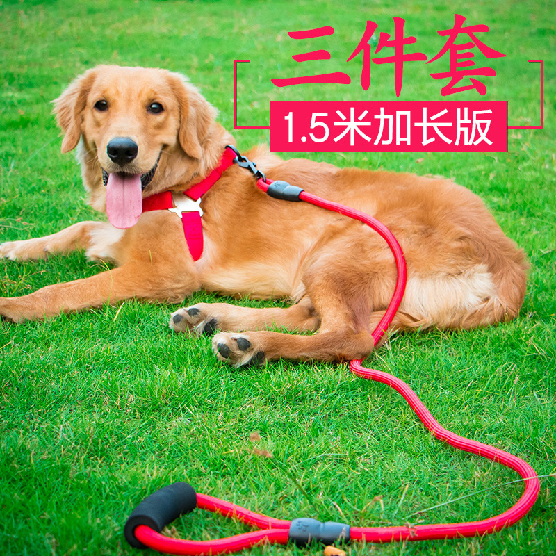 Dog Hand Holding Rope Dog Chain Neck Ring Teddy Golden Retriever Cat Small Medium Large Puppy Dog Rope Dog Supplies