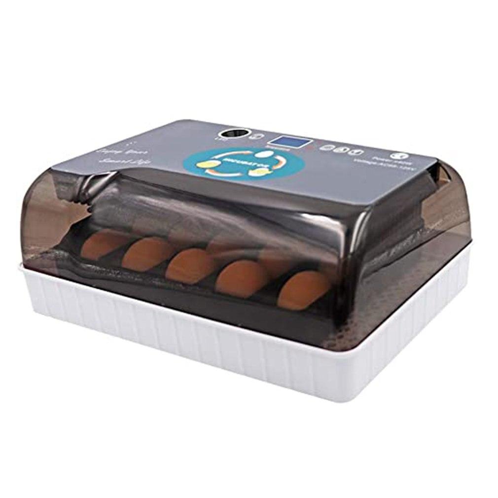 12 Pombo ovos Incubadora Incubadora de Ovos