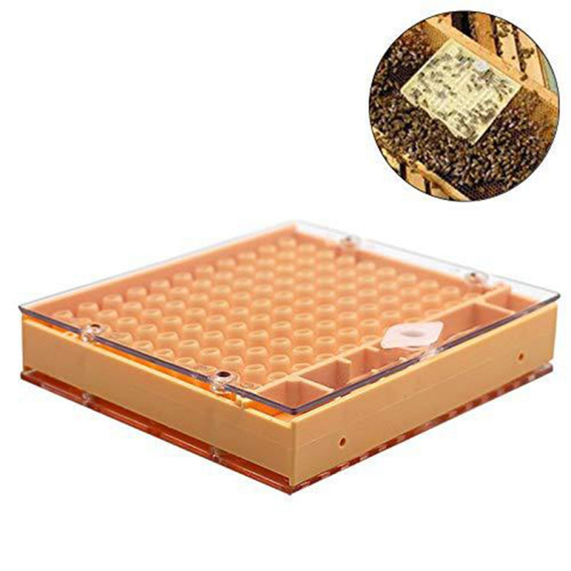 Beekeeping Industry Queen Rearing Plastic Box Honeycomb Bee Hive Queen Breeding Isolation Beekeeping Equipment