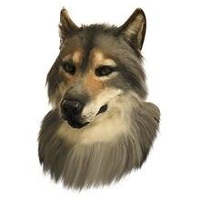 Cosplay Lobo parte máscaras 1pc reutilizables lavables la cara cubierta de la boca para Unisex Halloween de simulación de sombrero para Animal máscara