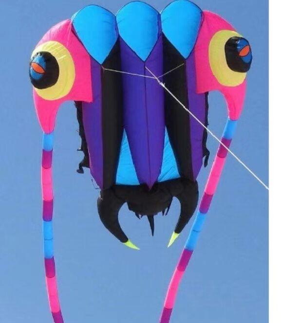 Cerf-volant Trilobites de haute qualité 7sqm grand cerf-volant ripstop en nylon souple