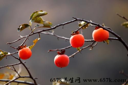 痔疮吃什么 常吃梨子能缓解痔疮病