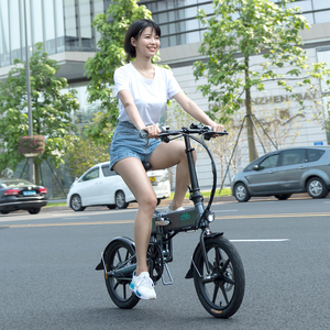 Electric Bike For Adults Varia